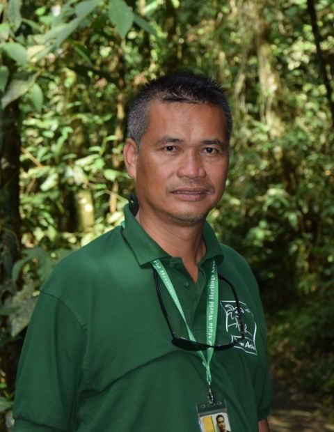 Apai, Borneo