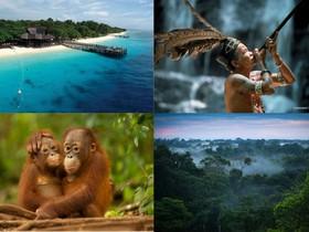 Veľký okruh exotickým Borneom