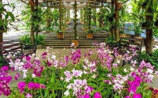 Záhrada orchideí